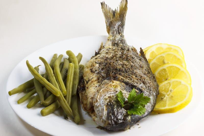 Förberedd, lagad mat, stekt bakad doradofisk eller havsbraxen med haricot vert och citronskivor arkivbild