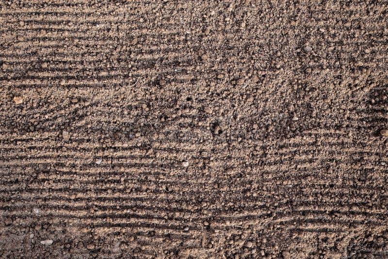 Förberedelse av land, innan att plantera Texturen av jordningen med horisontalspår från krattar, klart att landa v?tt arkivbild