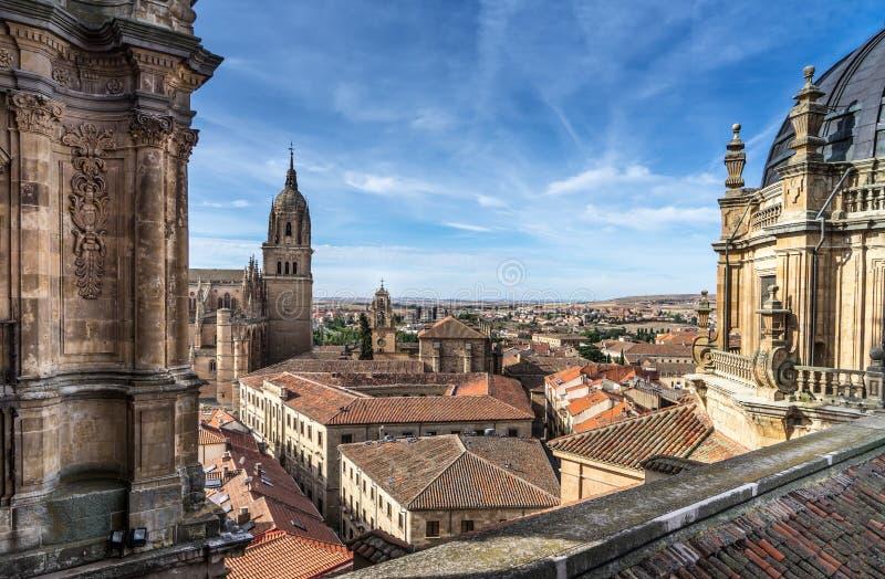 Förbise det nya domkyrkaKlocka tornet av Salamanca royaltyfri foto
