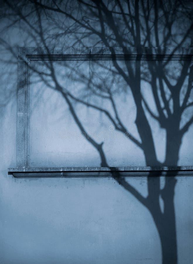 förblinda fönstret royaltyfri bild