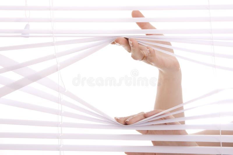 förblindar fönstret royaltyfria foton