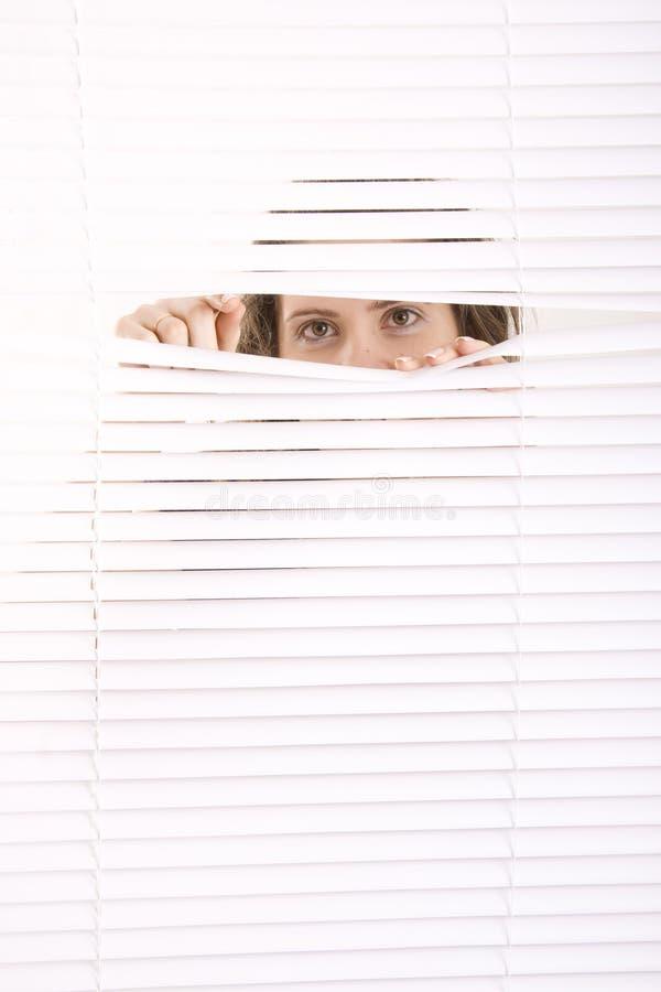 förblindar fönstret royaltyfria bilder