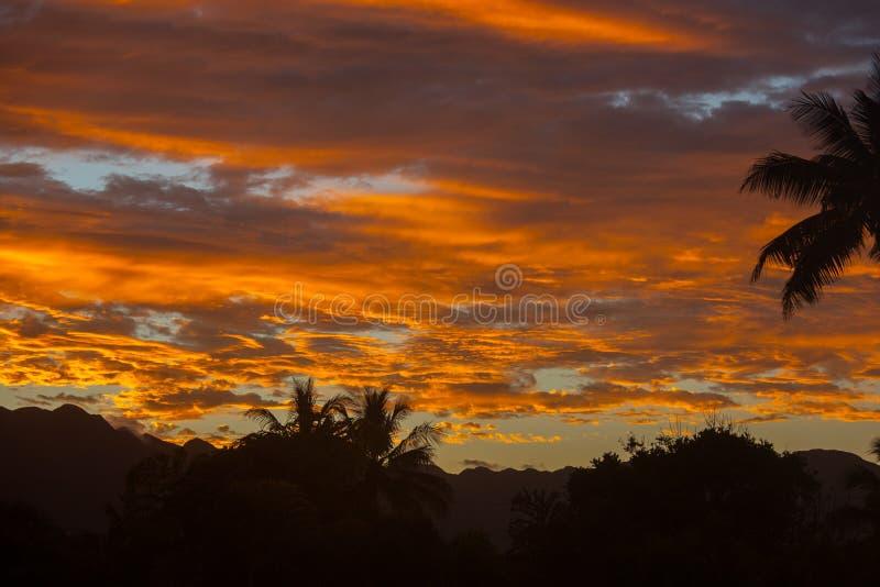 Förbluffa den hawaianska tropiska solnedgången Oahu för färger arkivbilder