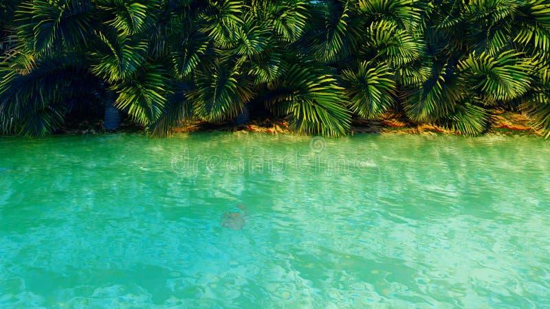 Förbluffa det fantastiska dammet i djungeln klar dag Gröna palmträd, klart vatten, kryp och fjärilar framf?rande 3d vektor illustrationer
