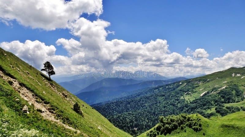 Förbluffa Kaukasus fotografering för bildbyråer