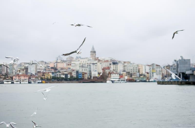 Förbluffa sikt av den Galata torngränsmärket i Istanbul, huvudstaden av Turkiet Vykortsikt Istandul Januari 2019 arkivfoto