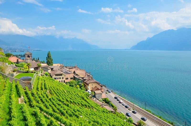 Förbluffa sikt av Genève sjön, gummilacka Leman, med den helgonSaphorin byn, Schweiz Härliga terrasserade vingårdar på närgränsan royaltyfri fotografi