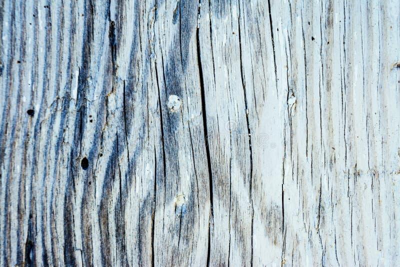 Förbluffa sikt på tappningträbakgrund med torr skalande målarfärg Instagram toningeffekt arkivfoton