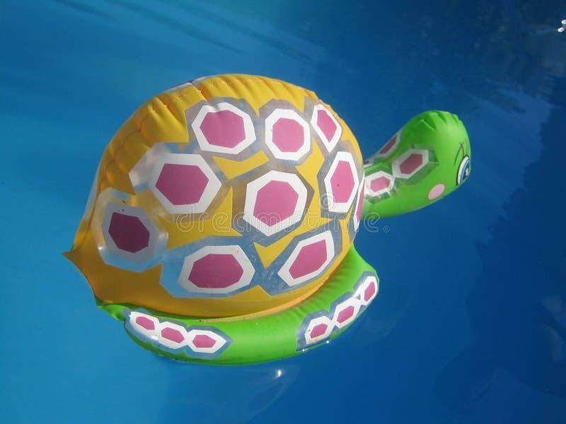 Förbluffa simma leksaker i djupblå tapet för pölvattenmakro royaltyfri fotografi