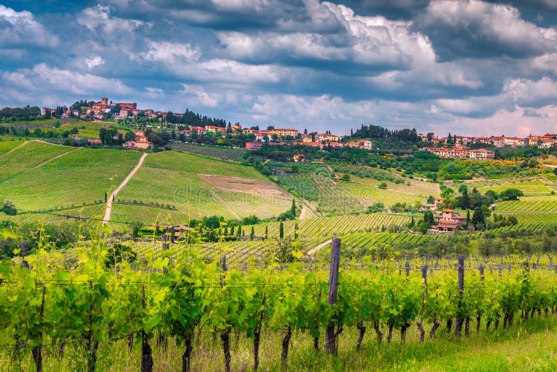 Förbluffa vingården med spektakulär cityscape, Chiantiregion, Tuscany, Italien, Europa royaltyfri foto