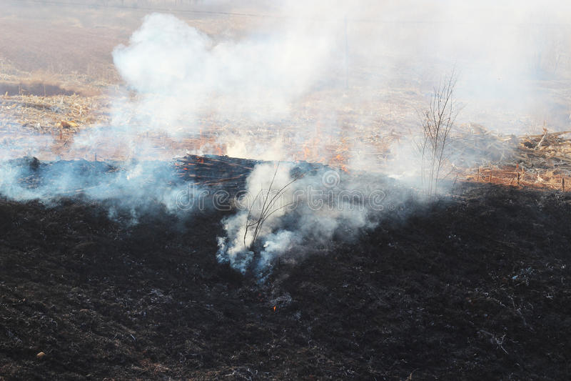 Förbränning av röker och aska fotografering för bildbyråer