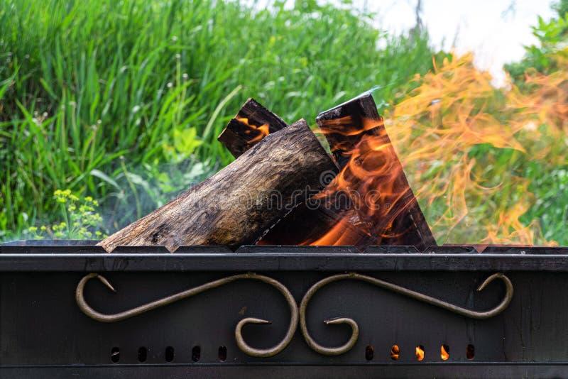 Förbränning av trästockar i en stålbänk royaltyfri foto