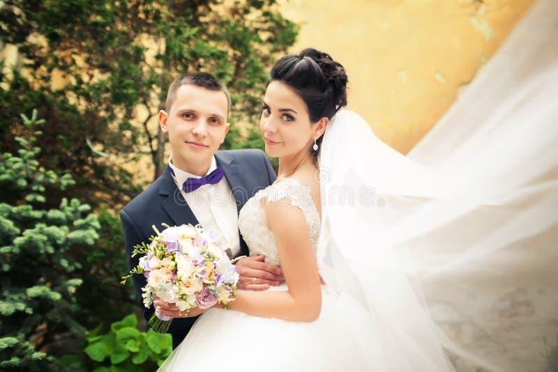 förbunden att kyssa som nytt att gifta sig Vind som lyfter långt vitt brud-, skyler royaltyfri bild