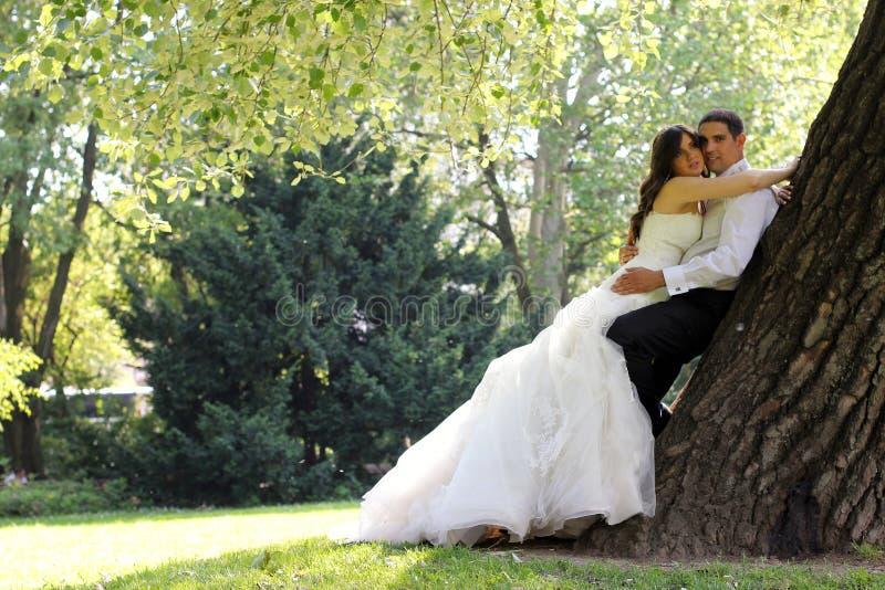 förbunden bröllop royaltyfria bilder