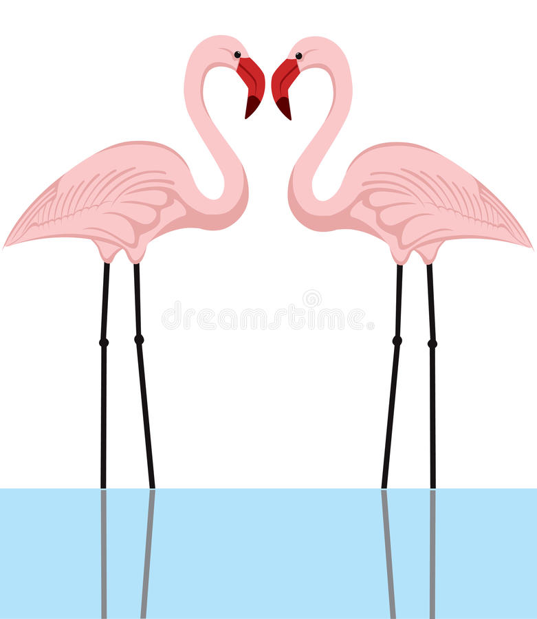 förbunden flamingoen stock illustrationer