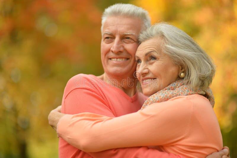 förbunden lyckligt mature royaltyfri fotografi