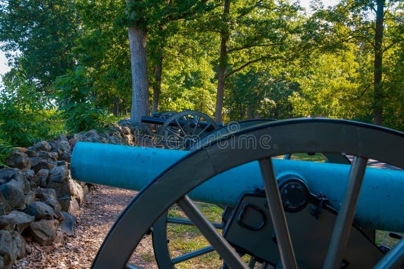 Förbundsmedlem kanoner på seminariet Ridge royaltyfri bild