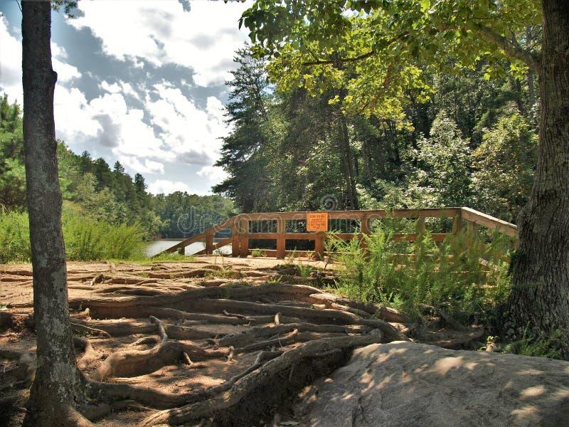 Fördämning på sjön Norman State Park i North Carolina royaltyfri bild