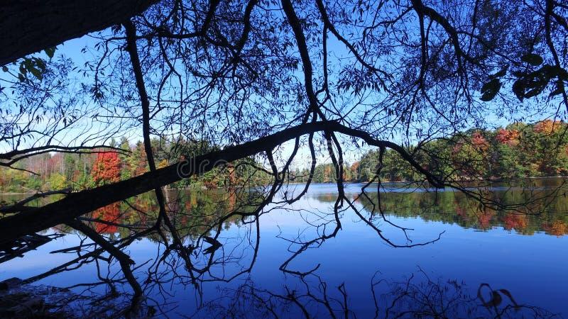 Fördämning sjö Toronto Richmond Hill royaltyfri bild