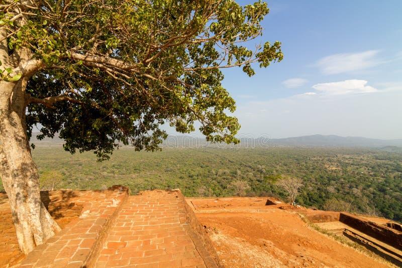 Download Fördärvar överst Av Den Sigiriya Lion'sens Slott För Rock Arkivfoto - Bild av fördärvar, kungarike: 27281572