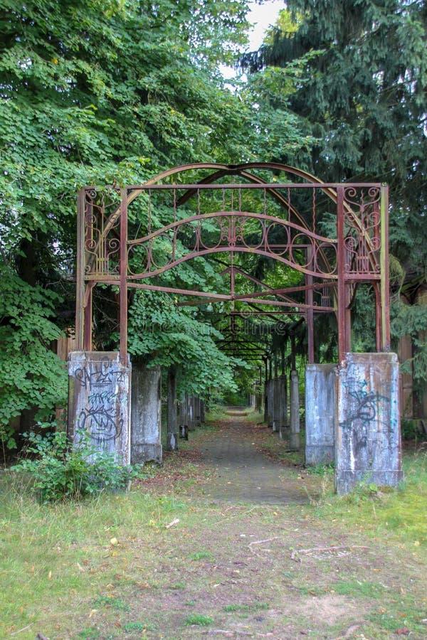 Fördärvar av Beelitz-Heilstätten förlorade stället Berlin Brandenburg royaltyfri fotografi