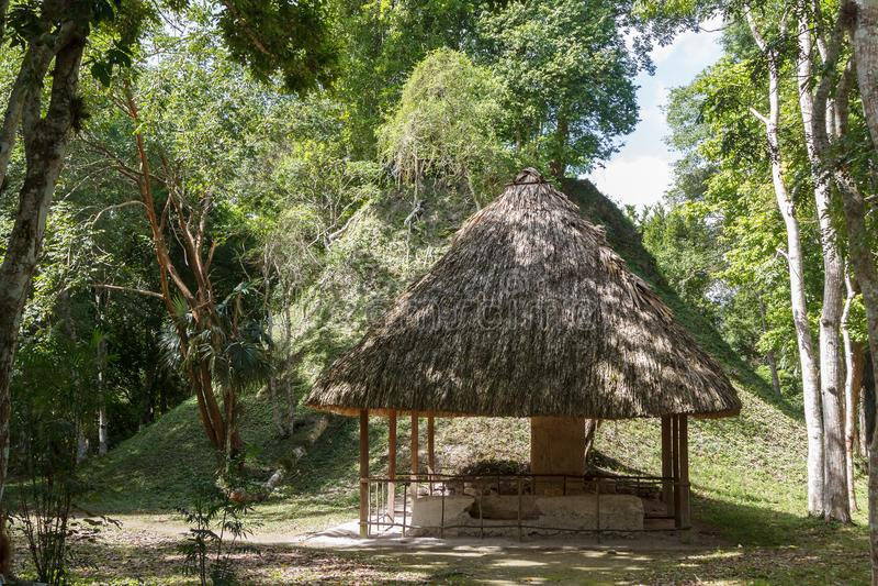 Fördärvar av den forntida Mayan staden Yaxha arkivbild