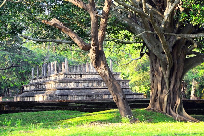 Fördärvar av den forntida Sinhaleseparlamentet, Polonnaruwa, Sri Lanka royaltyfri bild
