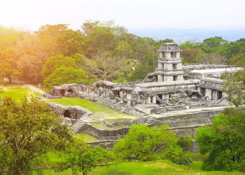 Fördärvar av den kungliga slotten, Palenque, Chiapas, Mexico arkivfoton