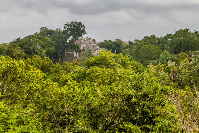 Fördärvar av den norr akropolen på den arkeologiska platsen Yaxha, Guatema royaltyfri fotografi