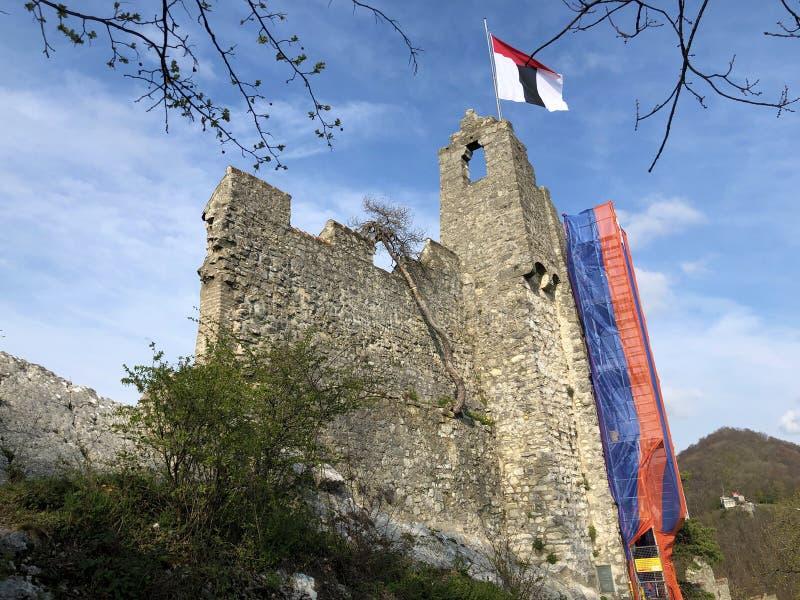 Fördärvar av den Stein Castle eller Schloss ölkrus- eller Ruine ölkruset eller den Schlossruine ölkruset, Baden fotografering för bildbyråer