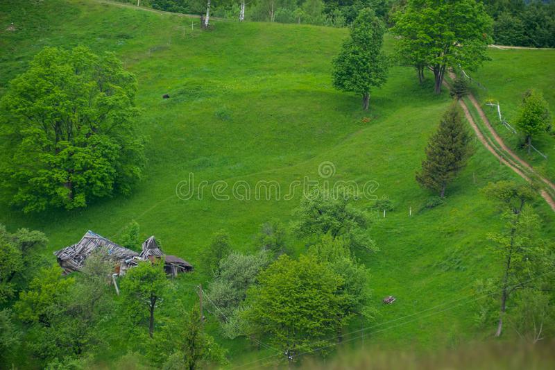 Fördärvar av ett lantbrukarhem på en grön äng arkivfoto