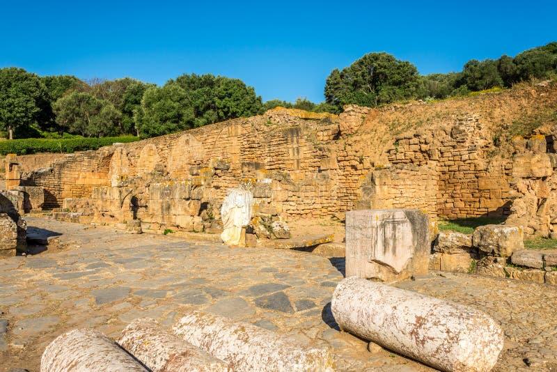 Fördärvar av forum i forntida Chellah Sala Colonia i Rabat, Marocko royaltyfri bild