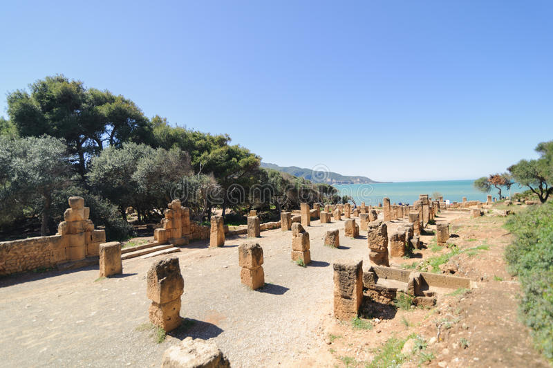 Fördärvar av Tipasa (Tipaza) Den groteska staden var en colonia i romerska landskapMauretania Caesariensis loca arkivfoto