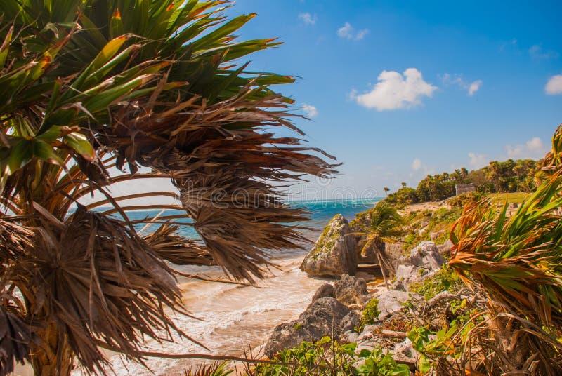 Fördärvar av Tulum, Mexico som förbiser det karibiska havet i Rivieraen Maya Aerial View Tulum strand Quintana Roo Mexico - surrs arkivfoton