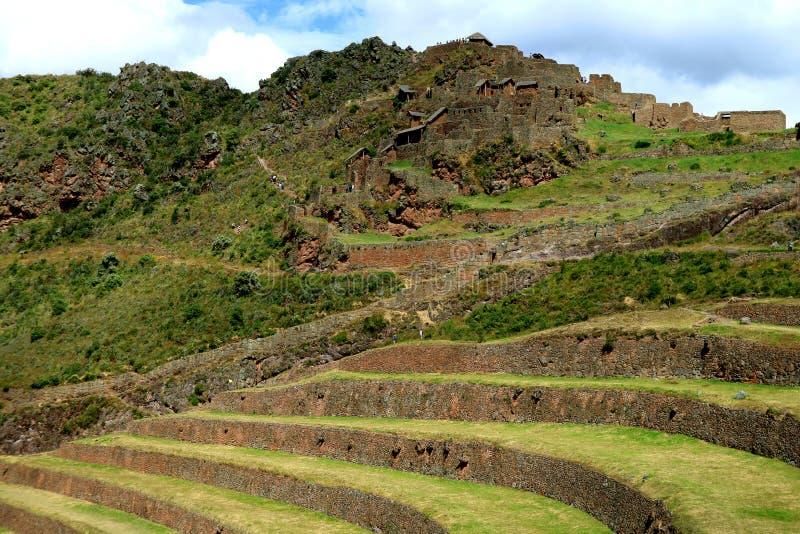 Fördärvar jordbruks- terrasser för Inca och det forntida på Pisac den arkeologiska platsen, den sakrala dalen, Peru royaltyfri foto