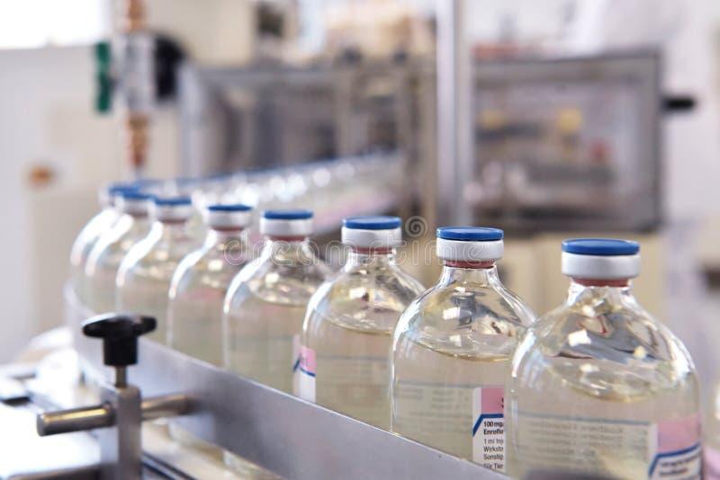 Förderband für die Produktion von Arzneimitteln und von Füllen stockbild