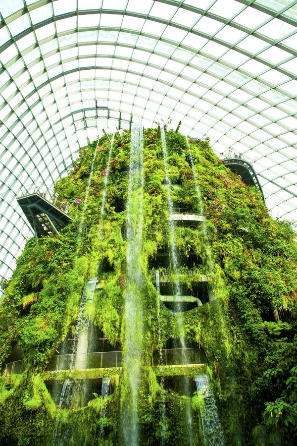 Fördunkla skogvattenfallet, trädgårdar vid fjärden, Singapore royaltyfri bild