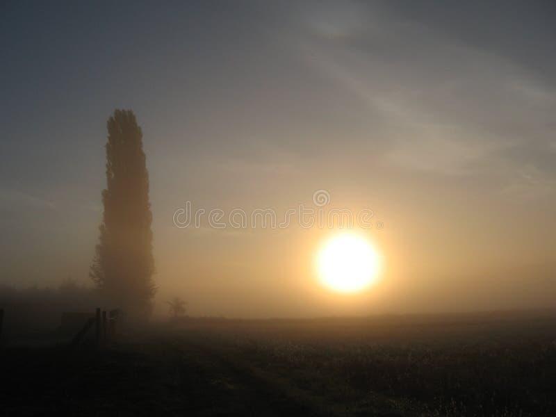 fördunkla soluppgången