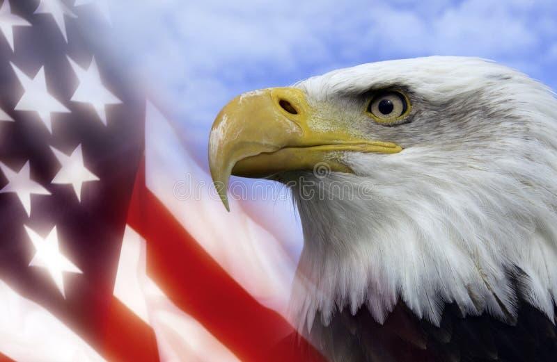 förenade Amerika tillstånd royaltyfria bilder