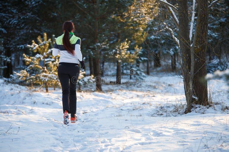 Föreställa från baksida av den unga idrottsman nen som går till och med vinterskog arkivfoto