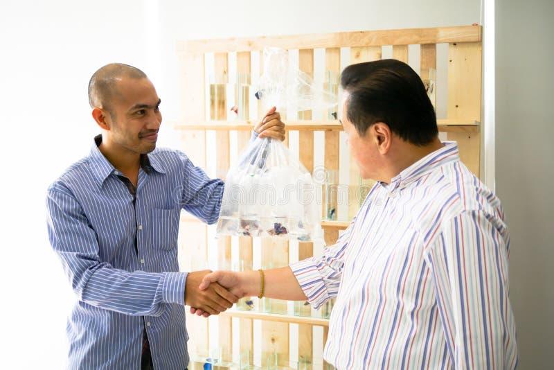 Företagsägaren säljer den siamese stridighetfisken som bettaen är welc royaltyfri foto