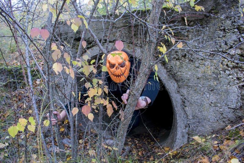 Förfärlig varelse i höstskogen i aftonen lyckliga halloween Pumpkinhead arkivfoto
