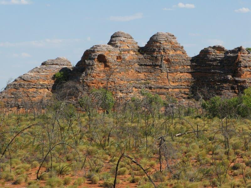 förfuska nationalparken arkivbild