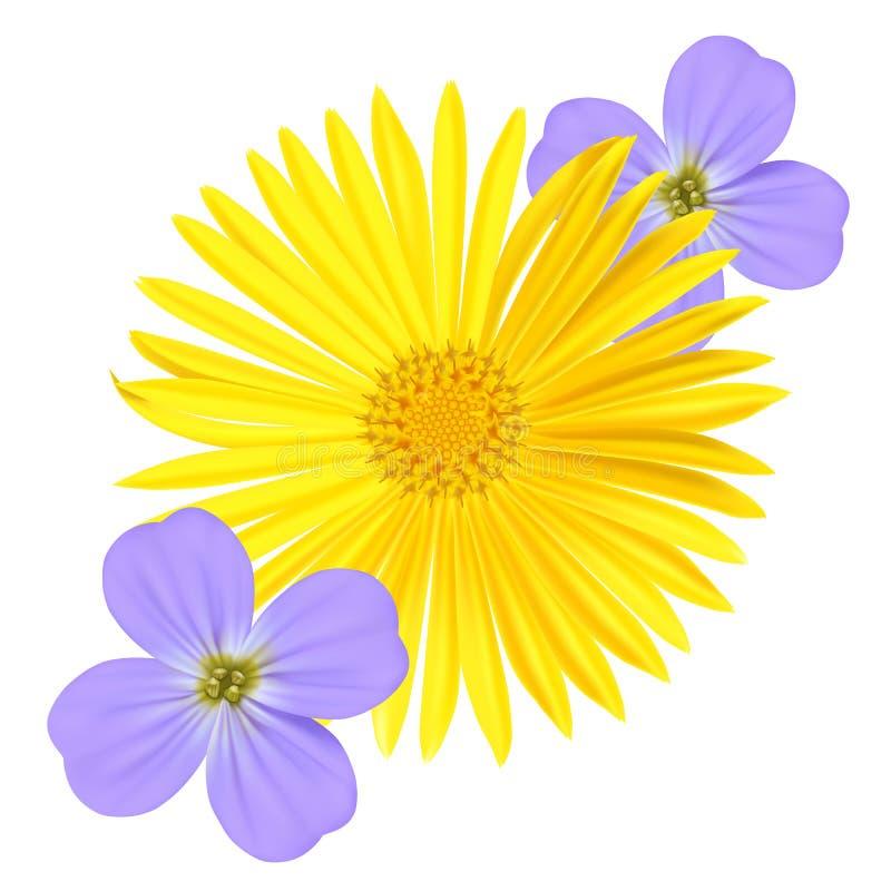 Förgätmigejljus - blåa Viola Flower och gul tusensköna som isoleras på vit bakgrund stock illustrationer