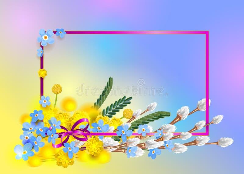 Förgrena sig den blåa förgätmigejen för bukett, den gula mimosan och den fluffiga pilen Vår för ramvykortsäsong vektor illustrationer