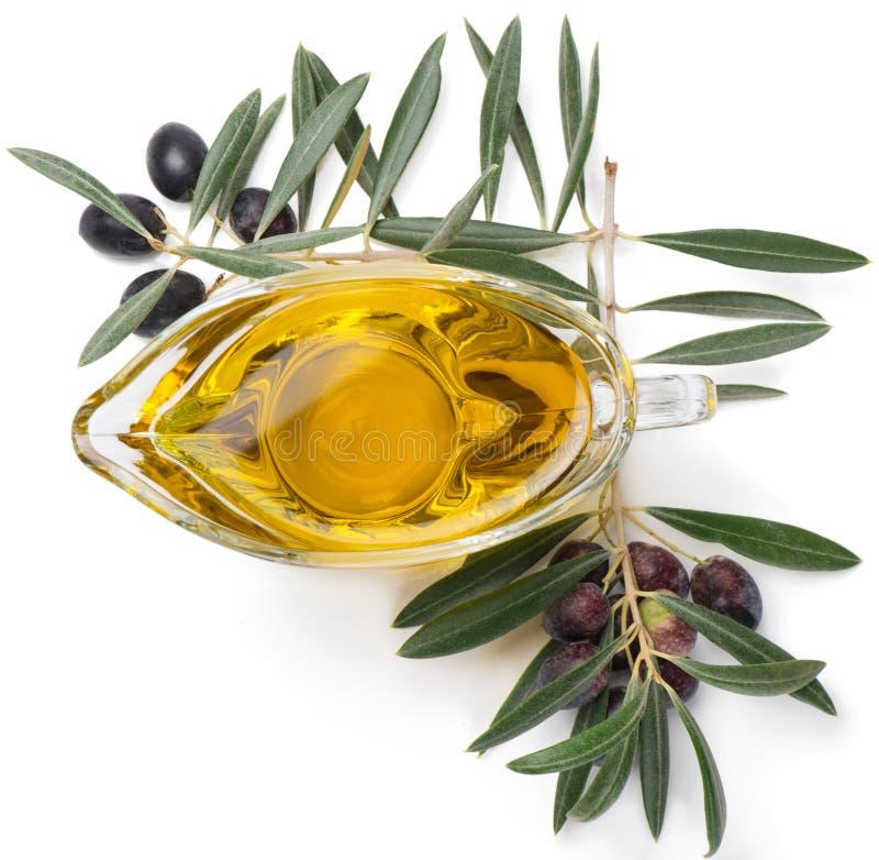 Förgrena sig med oliv och olivolja, bästa sikt royaltyfri fotografi