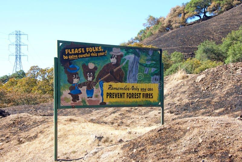 Förhindra skogsbränder undertecknar in mitt av den brända skogen royaltyfri foto
