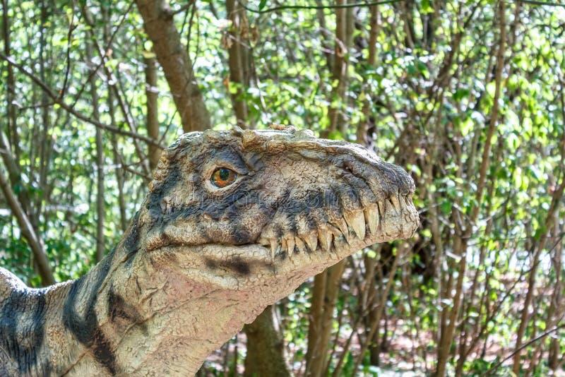 Förhistorisk dinosaurierovfågel royaltyfria bilder
