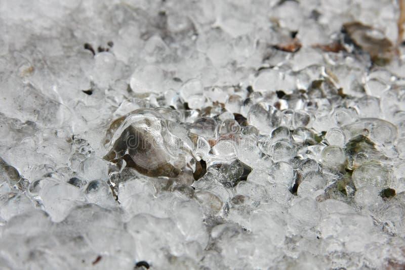 Förkylning is, himlavalet som frystes i början av April, vatten, land rymde ner vid is royaltyfria foton