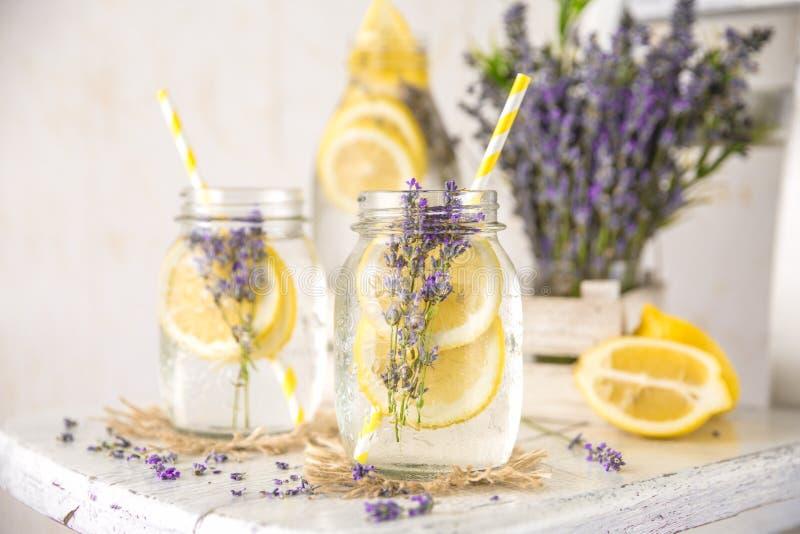 Förkylning ingett Detoxvatten med citronen och lavendel arkivbild
